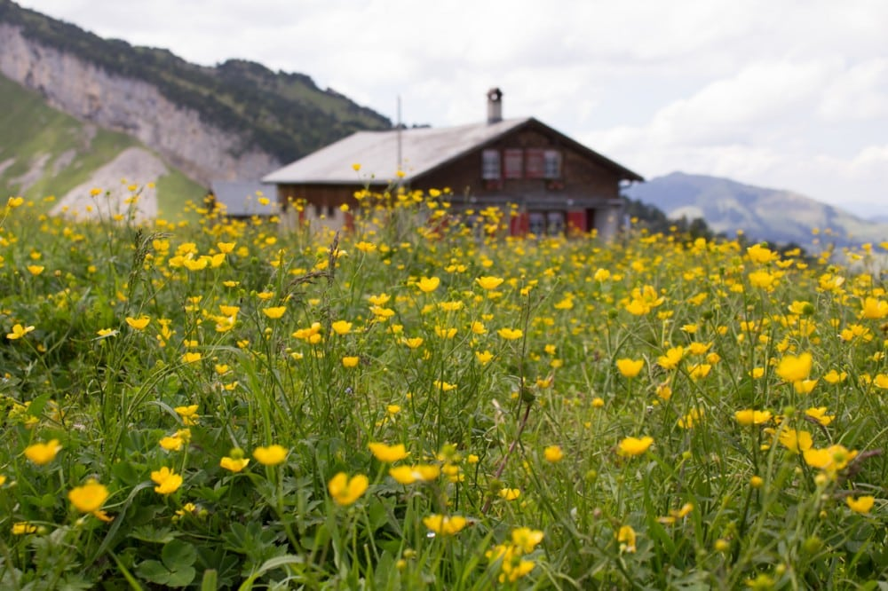 Appenzell-29